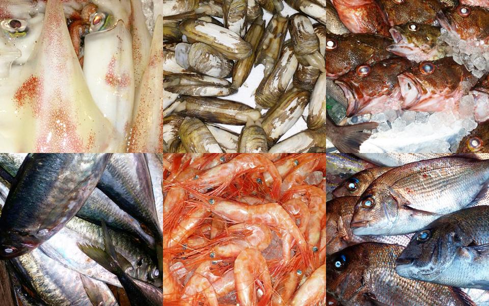 魚がおいしい理由、天神からも近い居酒屋です。
